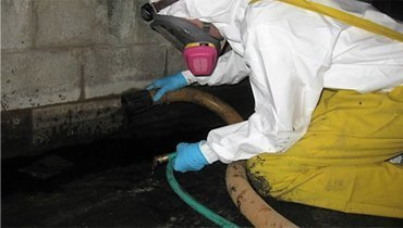 Sewage cleanup services