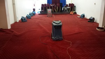 drying up carpet